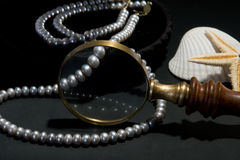Pearls in a black box. Pearls in a black plate with magnifying glass Royalty Free Stock Images