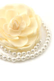 Pearls and flower. Macro shot of a beautiful flower and pearl necklace isolated on white Royalty Free Stock Images