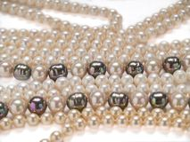 Pearls necklaces jewelry Stock Photo