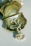 Pearls on oyster shell. A string of pearls laid out on an open oyster shell Royalty Free Stock Photos