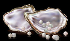 Pearls in the oyster shell Royalty Free Stock Images