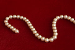 Pearls On red Royalty Free Stock Images