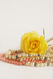 Pearls & rose Stock Images