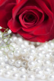 Pearls and Rose Stock Image