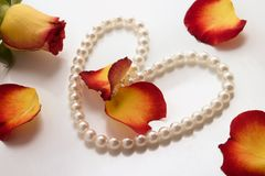 Pearls and roses. White pearl necklace and petals of roses over white background Stock Photography