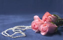 Pearls and roses. Pink roses and pearls on grey velvety background stock image