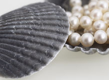 Pearls and sea shells Royalty Free Stock Photo