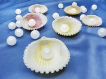 Pearls in sea shells on blue background Royalty Free Stock Photography