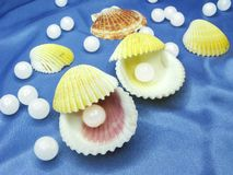 Pearls in sea shells on blue background Stock Photo