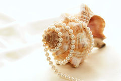 Pearls wrapped around conch Royalty Free Stock Photo