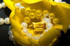 Pearls on yellow Stock Photos