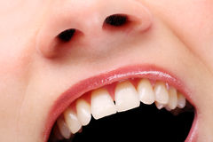 Pearly whites Royalty Free Stock Photography