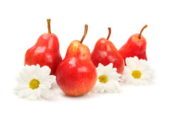 Pears. Ripe red pears and flowers on white background stock photo