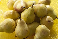 Pears Stock Photography