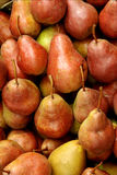 Pears. Organically grown pears in box for winter storing Royalty Free Stock Photo