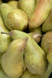 Pears. All Over the Picture Royalty Free Stock Image