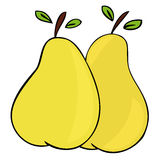 Pears. Royalty Free Stock Image