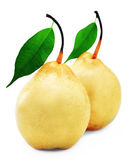 Pears. Pear on white background ripe fruit Royalty Free Stock Photo