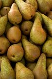 Pears. Lots of pears on display Royalty Free Stock Photography