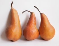 Pears. Three pears on white background Royalty Free Stock Photography