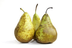 Pears. Group pears isolated on white background Stock Photos