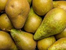pears Royaltyfria Foton