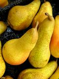 Pears. Bunched together royalty free stock photo