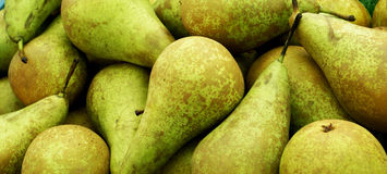 Pears. Stock Photos