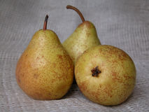 Pears. Three yellow pears Royalty Free Stock Photos