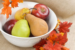 Pears and Apples in a White Bowl Royalty Free Stock Photo