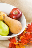 Pears and Apples in a White Bowl Stock Image