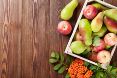 Pears and apples in wooden box Stock Image
