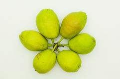 Pears. Arranged pears on white background Royalty Free Stock Photos