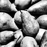 Pears . Artistic look in black and white. Royalty Free Stock Images