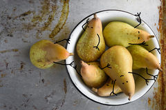 Pears as small comic characters in bowl. Rustic vintage style. Still life Royalty Free Stock Image