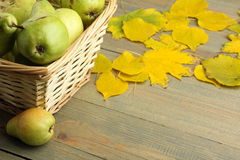 Pears and autumn leaves Stock Image