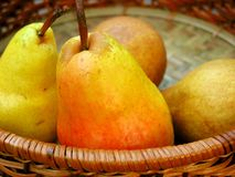 Pears in a basket. Colorful bartlett pears in a basket Stock Photos