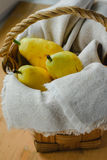 Pears in the basket Stock Image
