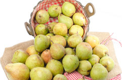 Pears in a basket and on burlap Stock Image