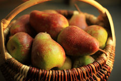 Pears basket - old species of lithuania Stock Photos