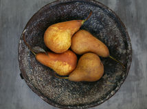 Pears in the bawl. Still life with pears in the bawl royalty free stock photography