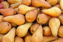 Pears. Big Bunch of Pears Fruits Stock Photography
