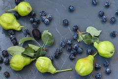 Pears and blackthorn are located on a dark background in random order. stock photo