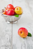 Pears in a colander Stock Images