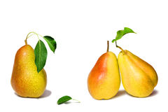 Pears collection. Isolated on a white Royalty Free Stock Photography