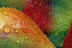 Pears with drops. Extreme close up on some green pears with drops of water stock photography