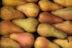 Pears at a famers market in France Stock Photography