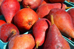 Pears at farmers market Royalty Free Stock Photo