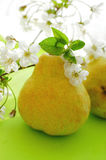 Pears and flowers Royalty Free Stock Image