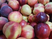 Pears. Fruits summer day shop Royalty Free Stock Photos